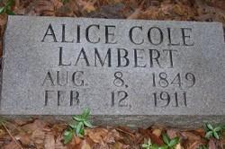 Alice <i>Cole</i> Lambert