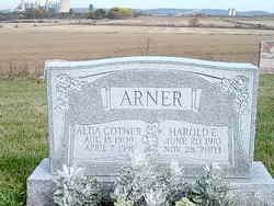 Harold E Arner