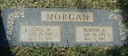 Jewell Daisy <i>Westbrook</i> Morgan