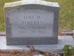 Luke M Roberts