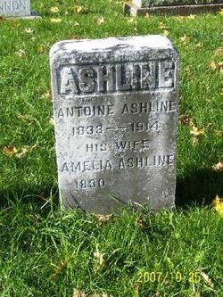 Amelia Ashline