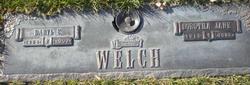 Daryl E Welch