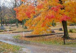 Helena Township Cemetery