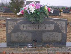 David Kellan George