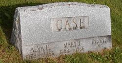 Alva Henry Case