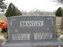 Evelyn Mayme <i>Mauldin</i> Brantley