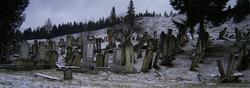 Jewish Cemetery � Gura Humorului