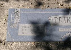 Andrew Arnold Prikryl