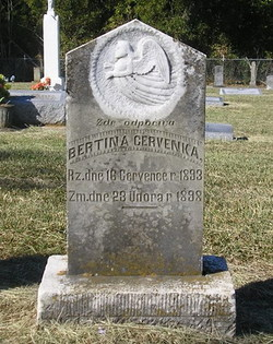Bertina Cervenka