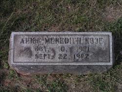 Alice Meredith Hooe