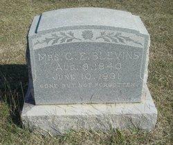 Mrs C. E. Blevins