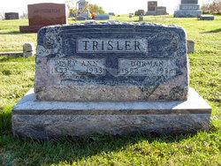 Dorman Trisler