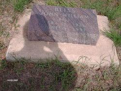 John William Bliss