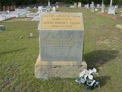 Walter Augustus Clark