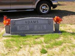 Agnes Hennig Adams