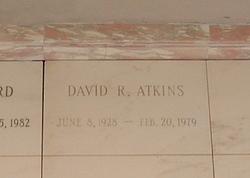 David Robert Atkins
