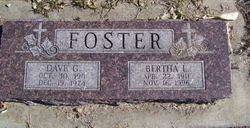 Dave G Foster