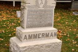 Warren B Ammerman