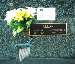 Antionette D Allan