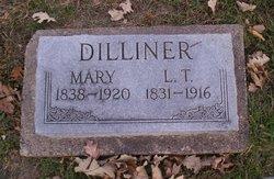 Mary Ann <i>Davis</i> Dilliner