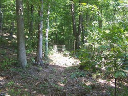 Old Laurel Fork Cemetery