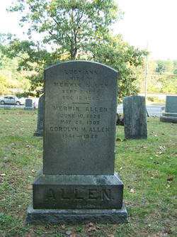 Corolyn M Allen