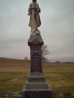 W. H. Amsbaugh