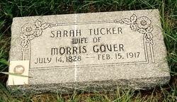 Sarah <i>Tucker</i> Gover