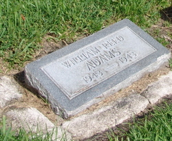 Williams Reed Adams