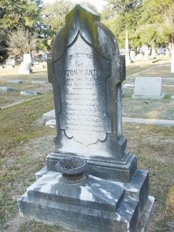 Milton W Antony