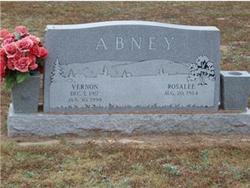 Vernon Abney