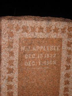 Nathan J Applebee