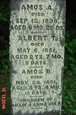 Albert Tell Culp