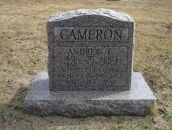 Andrew L. Cameron