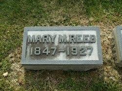 Mary M Reed