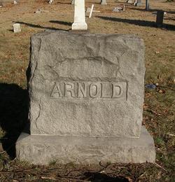 Unknown Arnold