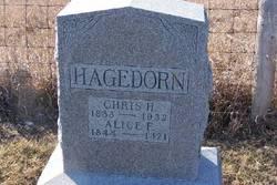 Alice F Hagedorn