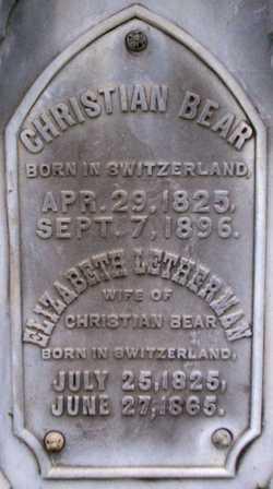 Christian Bear