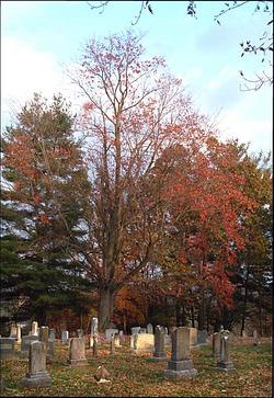 Ottobine United Methodist Church Cemetery
