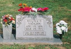 Will Vaughn