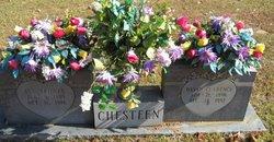 David Clarence Chesteen