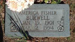 America <i>Fisher</i> Burwell