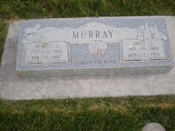 Arlie J Murray