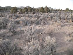 Anderson Shoshone Indian Cemetery