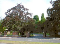 Gilroes Cemetery and Crematorium