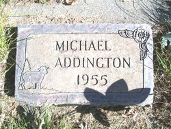 Michael Addington
