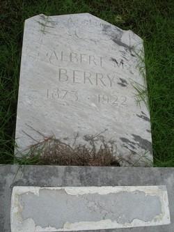 Albert M. Berry