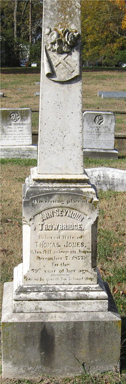 Ann Seymour <i>Trowbridge</i> Jones