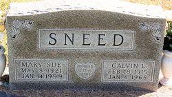 Mary Sue Sneed