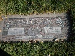 Randi Evelyn <i>Syversen</i> Andersen